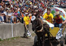 състезание магарешки каручки