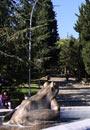 Стара Загора паркове