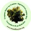 Старият бряст представя България в конкурса Европейско дърво на годината 2014
