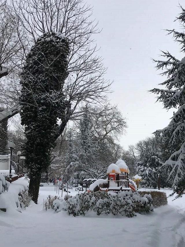 1СТЗ сняг