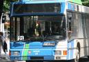 повече автобуси квартали