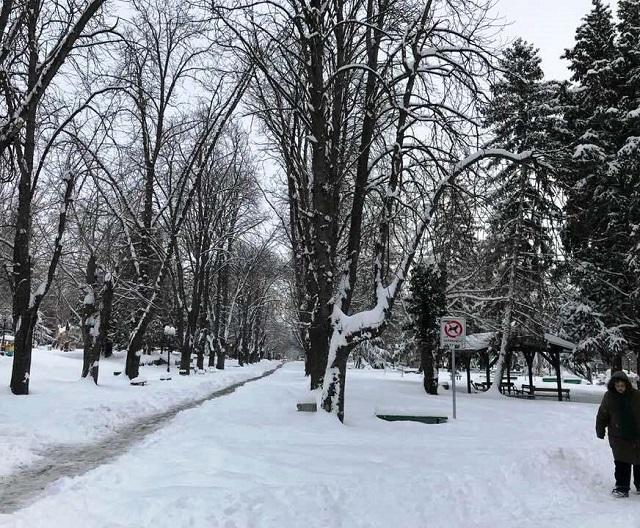 СЗ зима