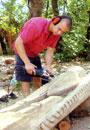 Златна рибка и щъркел ще домуват на Аязмото в Стара Загора